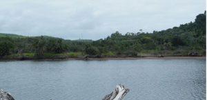 Mpenjati Nature Reserve